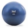 Everlast fitness bal