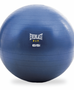 Everlast fitness bal