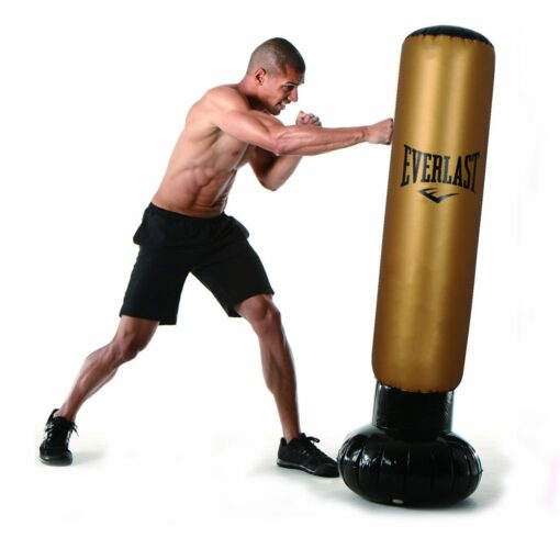 Everlast powertower